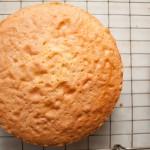 Cooked sponge