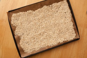 Oats before toasting