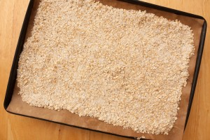 Oats mixed with Dessicated Coconut ready for toasting